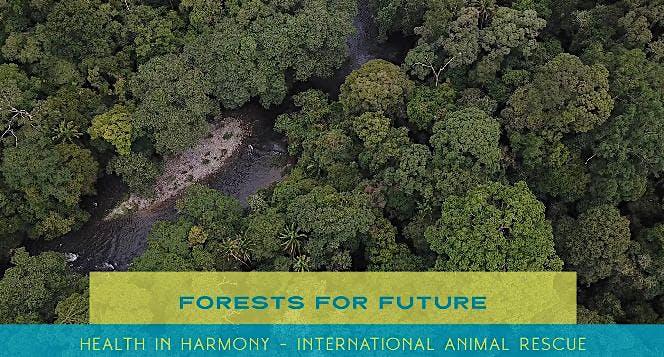 Hutan untuk Masa Depan #ForestsforFuture