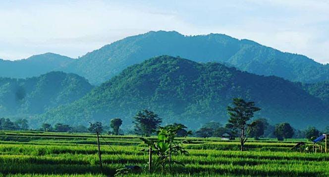 Ekspedisi Menjemput Harimau Jawa Sanggabuana 2019